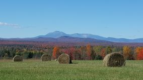 Montagne Hayfield de Katahdin photo libre de droits