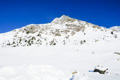 Montagne innevate Immagini Stock