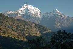 Montagne innevate di Annapurna dal sud, Chainabatthi, Ne Fotografia Stock