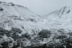 Montagne innevate, Isla Navarino, Cile Fotografie Stock