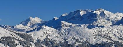 Montagne innevate nel Bernese Oberland Fotografia Stock Libera da Diritti