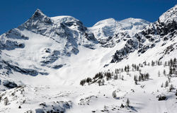 Montagne innevate nelle alpi svizzere Fotografia Stock