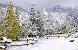 Montagne in inverno immagini stock