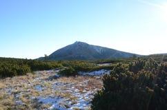 Montagne isolée Photo libre de droits
