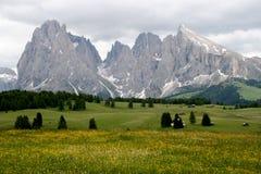 Montagne italiane - Alpe di Siusi Fotografie Stock Libere da Diritti