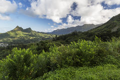 Montagne lungo la strada principale di Pali al parco di stato di Nuuanu Pali Oahu Fotografia Stock Libera da Diritti