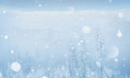 Montagne maestose del paesaggio misterioso di inverno in immagine stock libera da diritti