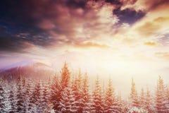 Montagne maestose del paesaggio misterioso di inverno dentro Immagine Stock Libera da Diritti