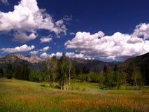 Montagne Medow 2 Photographie stock libre de droits