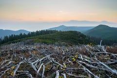 Montagne Miao Chan di tramonto Immagini Stock Libere da Diritti