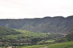 Montagne Moezel Germania con l'uva immagini stock libere da diritti