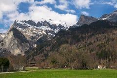 Montagne in molla in anticipo con le rocce e la foresta Fotografie Stock