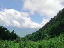 Montagne molto belle, montagne verdi Fotografia Stock