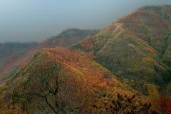 montagne multicolori Fotografie Stock Libere da Diritti
