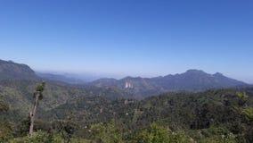 Montagne & natura di Mountain View immagini stock libere da diritti