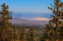 Montagne nazionali area-Mt ricreativo nazionale della Foresta-primavera di NV-Humboldt-Toiyabe charleston immagini stock libere da diritti