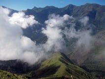 Montagne nebbiose del Kerala che lo rendono più duro vedere Fotografia Stock