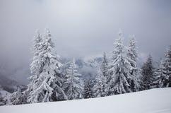 Montagne nebbiose in inverno Fotografia Stock Libera da Diritti