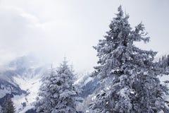Montagne nebbiose in inverno Fotografia Stock