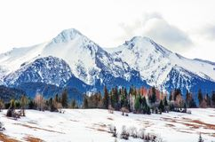 Montagne nell'inverno, Slovacchia di Belianske Tatry fotografia stock libera da diritti