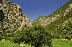 Montagne nella gola di Galuyan, Kirghizistan Immagini Stock