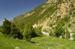 Montagne nella gola di Galuyan, Kirghizistan Fotografie Stock Libere da Diritti