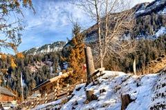 Montagne nevose bianche di inverno, cottage di legno e conifere verdi Fotografia Stock