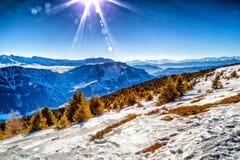 Montagne nevose bianche di inverno e conifere verdi Immagine Stock