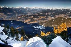 Montagne nevose bianche di inverno e conifere verdi Fotografie Stock