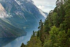 Montagne norvegesi Immagini Stock