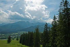 Montagne piene di sole di Tatra Immagine Stock