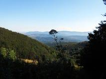 Montagne - planina di Suva immagini stock libere da diritti