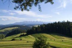 Montagne polacche Immagini Stock