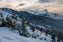 Montagne polacche di Tatra nell'inverno Immagine Stock