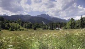 Montagne polacche di Tatra vicino Fotografie Stock