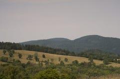 Montagne in Polonia - Bieszczady Fotografie Stock