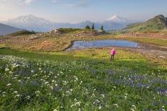 Montagne regardant fixement Photo libre de droits