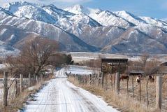 Montagne ricoperte neve nell'Utah Fotografia Stock Libera da Diritti