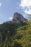 Montagne rocciose - Bicaz - Romania Immagini Stock