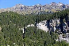 Montagne rocciose e terreno boscoso in Svizzera Fotografia Stock
