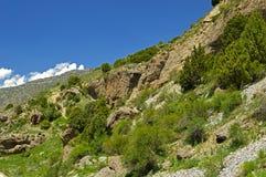 Montagne rocciose nel Kirghizistan Immagine Stock