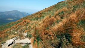 Montagne rocciose, panorama pittoresco, erba d'ondeggiamento e rocce video d archivio