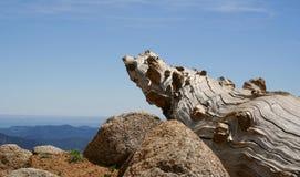 Montagne rocheuse Photo libre de droits
