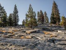 Montagne rocheuse avec des arbres image stock