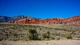 Montagne rosse del canyon della roccia Immagine Stock