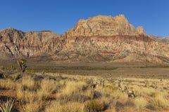 Montagne rosse della roccia con le piante del deserto dorate in priorità alta. Immagini Stock Libere da Diritti