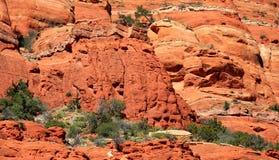 Montagne rosse della roccia di Sedona Arizona Fotografia Stock