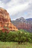 Montagne rosse di Sedona Immagini Stock Libere da Diritti