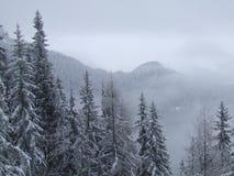 Montagne rumene Fotografie Stock