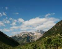 Montagne Scape avec les fleurs et le beau ciel bleu Photos libres de droits